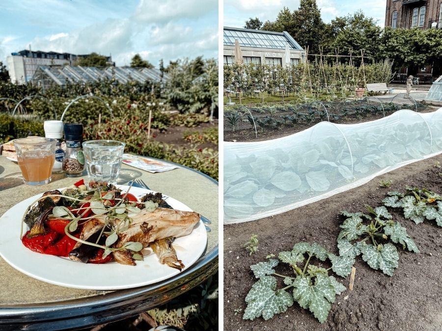 Ontbijten in de tuin van Villa Augustus in Dordrecht