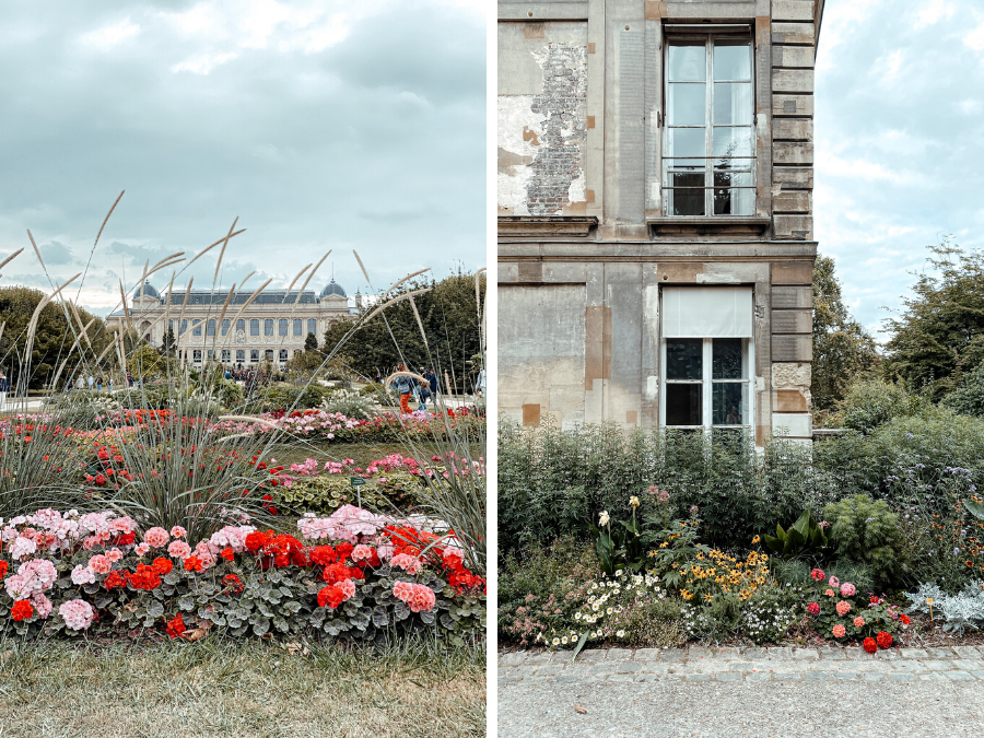 Instagram foto spots in Parijs: Jardin des Plantes